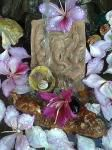 ganesha...move obstacles out of the way...water blessings..petals and bauhinia for change ..peace ..clarity..pure energy wellbeing..