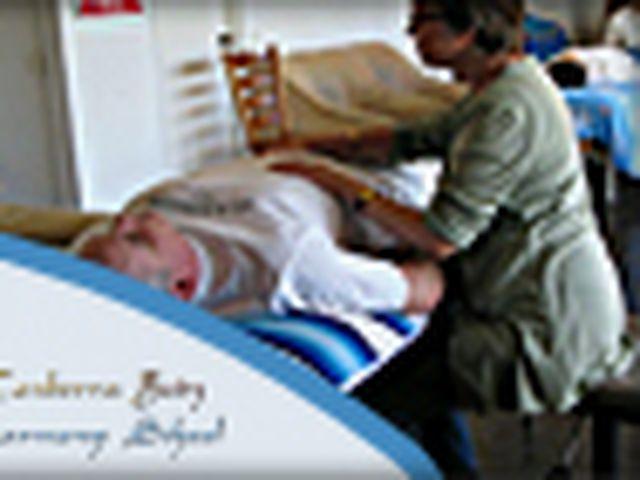 Canberra Body Harmony School - Consultations