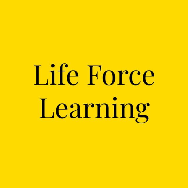 Welcome to the incremental workshops to learn how to utilize the lifeforce into your life and those in it. Available for Group or Individual training.