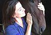 Mornington Peninsula Animal Therapies