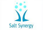 Salt Synergy