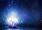 Ian Wallis Holistic Wellbeing Guide and Healer - Life Transformation