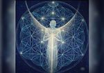 Transference Healing Certified Practitioner / Teacher