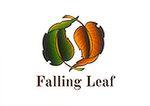 Falling Leaf Yoga and Massage
