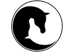 Equine Assisted Therapy &  Narrative Therapy