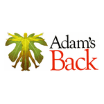 About Adam's Back