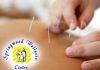 Springwood Wellness Centre - TCM & Acupuncture