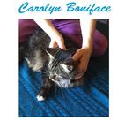 Carolyn Boniface - Biodynamic Animal Therapy