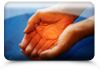 Heaven on Earth Holistic Therapies - Healing Therapies