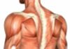 Enmore Centre for Spine & Musculoskeletal Health - Chiropractic Care