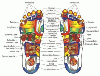 Reflexology, your entire body is reflected in your feet.