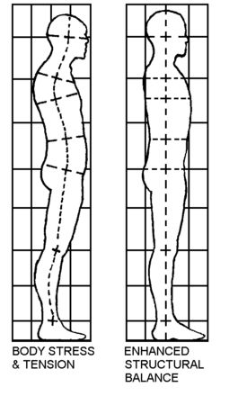 Structural integration allows the body to move fluidly again, to have stamina and be a pleasure to live in.